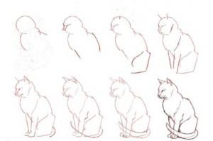 Поэтапный рисунок кошки