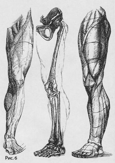 рисунок гипсовых слепков ног человека